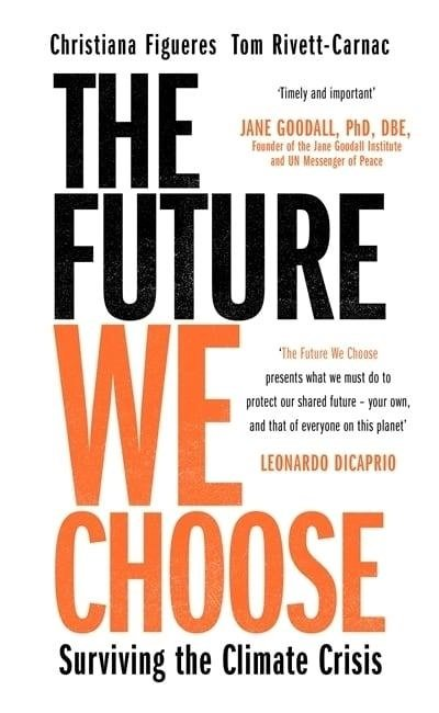 The Future We Choose: How to End the Climate Crisis 1 stk