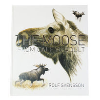 The moose : from calf to adult